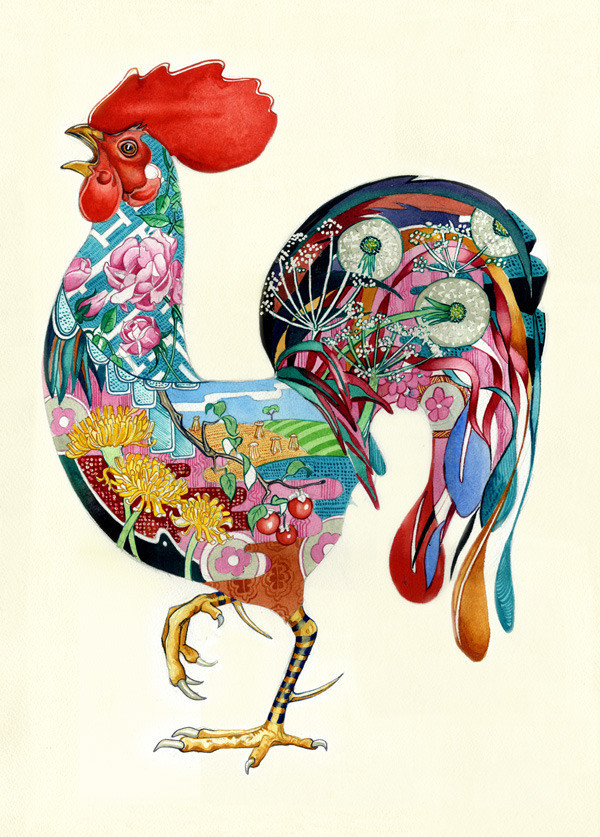 Daniel MackieCollection cards - Rooster - Sartorial Boutique and Gifts