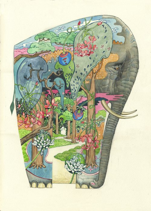 Daniel Mackie Collection cards - Elephant - Sartorial Boutique and Gifts