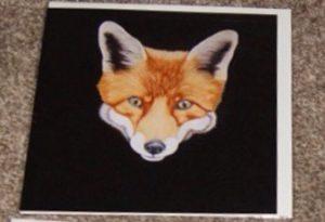 Steven Shaw - fox - card