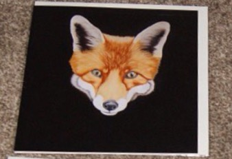 Steven Shaw - fox - card