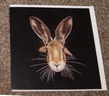 Steven Shaw - hare - card