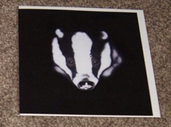 Steven Shaw - badger - card